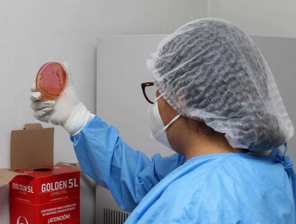 Laboratorio de referencia - Procesamiento de muestra